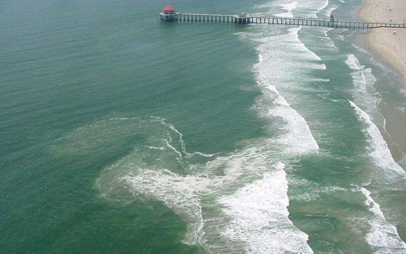 Изображение отбойного течения в океане